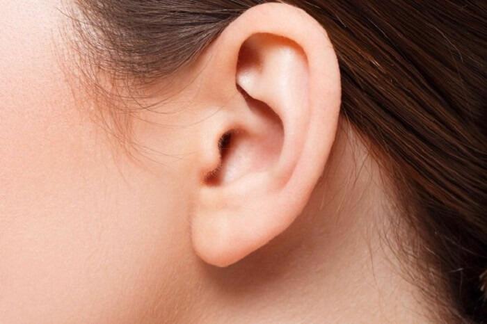 Người có dái tai dài có sức khỏe và tuổi thọ co