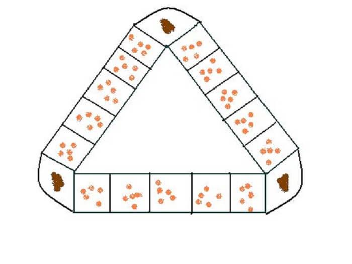 Cách sắp xếp dân và quan cho 3 người chơi