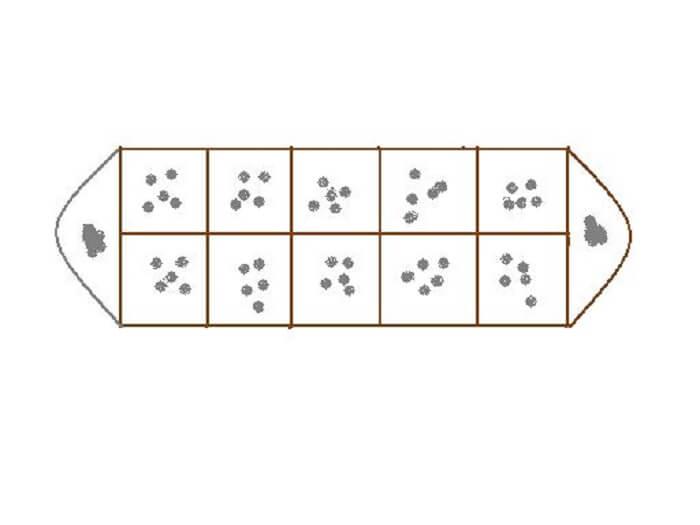 Cách sắp xếp dân và quan cho 2 người chơi